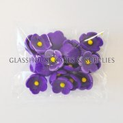 Pack of 20 Small Flowers - Dark Violet